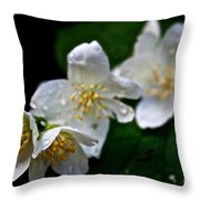 Softly Weeping Skies Throw Pillow