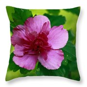 Solitary Moments Throw Pillow