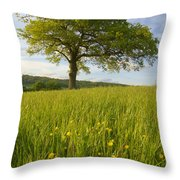 Solitary Oak Tree And Wildflowers In Throw Pillow