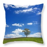 Solitary Tree In Green Meadow Throw Pillow by Bernard Jaubert
