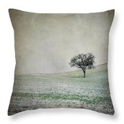 Solitary Tree In Winter. Auvergne. France. Europe Throw Pillow