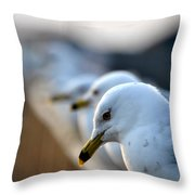 Some Alone Time Throw Pillow