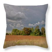 Somerset 3069 Throw Pillow