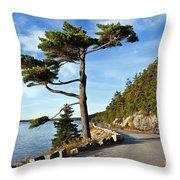 Somes Sound Maine Throw Pillow by John Greim