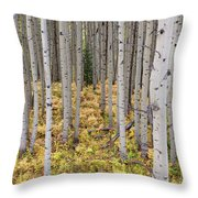 Something Different Throw Pillow