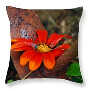 Something Old And Something New Throw Pillow