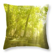 Soothing Rays Throw Pillow