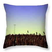 Sorghum Fields Forever Throw Pillow