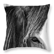 Soul Mate Too Throw Pillow