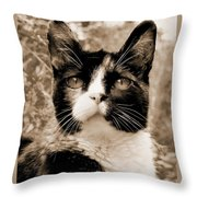 Souls Great And Small 2 Throw Pillow