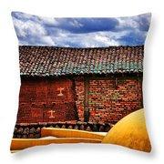 Source Throw Pillow