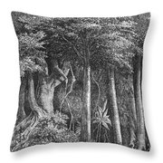 South America: Rubber Throw Pillow