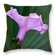 South American Morning Glory Throw Pillow