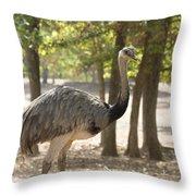 South American Rhea Throw Pillow