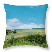 South Carolina Coastal Marsh Throw Pillow