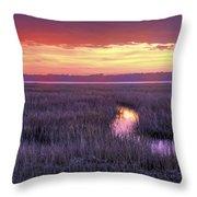 South Carolina Tidal Marshes Throw Pillow