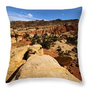 South Fruita Overlook Throw Pillow