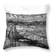 South Platte Park II Throw Pillow