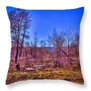 South Platte Park Landscape Throw Pillow