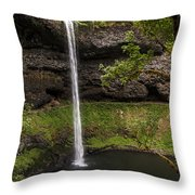 South Silver Falls Into The Pool Throw Pillow