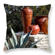 South Western Pottery And Cactus Throw Pillow