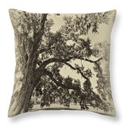 Southern Comfort Sepia Throw Pillow