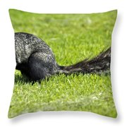 Southern Fox Squirrel Throw Pillow by Phill Doherty