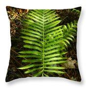 Southern Lady Throw Pillow