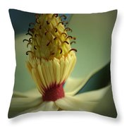 Southern Magnolia Flower Throw Pillow