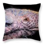 Southern Naked-tail Armadillo Throw Pillow
