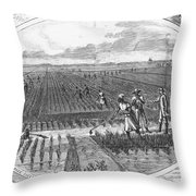 Southern Rice Field Throw Pillow by Omikron