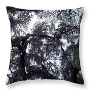 Southern Sky Throw Pillow