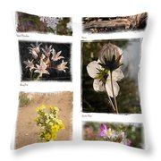 Southwest Wildflower Collection #2 Throw Pillow