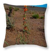 Southwest Wildflower Throw Pillow