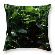 Soybean Leaves Throw Pillow