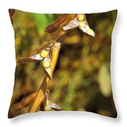 Soybean Yields After Seed Inoculation Throw Pillow by Science Source