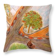 Spacetime Curvature In Israel Throw Pillow