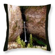 Spahats Creek Falls Throw Pillow