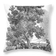 Spain: Orange Tree Throw Pillow