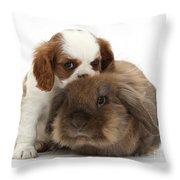 Spaniel Puppy And Rabbit Throw Pillow