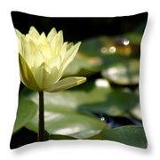 Sparkle Throw Pillow