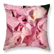 Sparkling Spring Throw Pillow