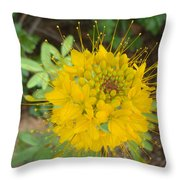 Yellow Bee Plant Sparks Throw Pillow