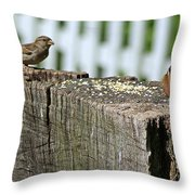 Sparrow And Chipmunk Coexist Throw Pillow