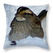 Sparrow V Throw Pillow
