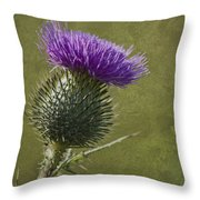 Spear Thistle With Texture Throw Pillow