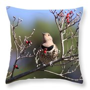 Speck Throw Pillow