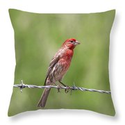 Speckled In Red Throw Pillow