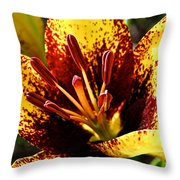 Speckled Sunshine Throw Pillow