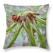 Spent Dandilion Throw Pillow